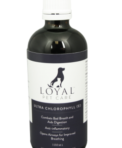 Liquid Chlorophyll for pets