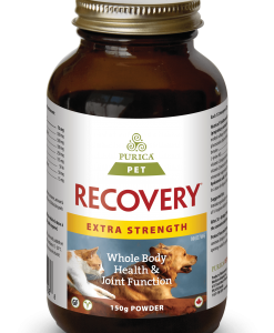 Purica Pet Recovery Extra Strength